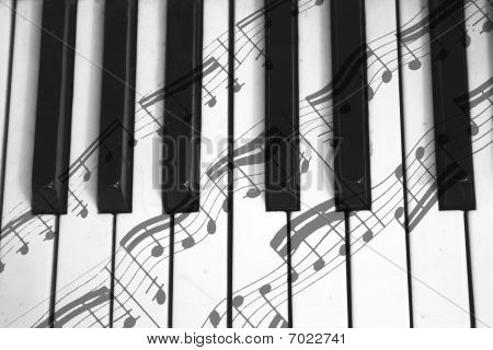 notes of the forte and piano taken in 2010 poster