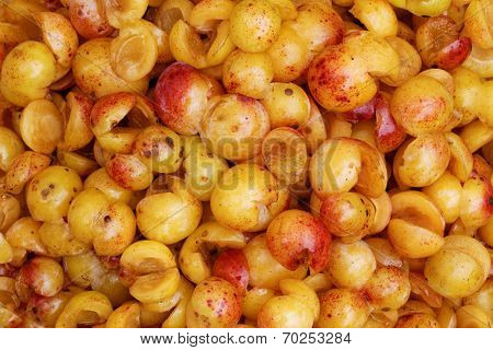 Mirabelles - Freshly Cored