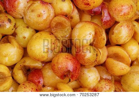 Mirabelles - Cut open and Cored