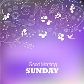 Days of the Week. Sunday. Text good morning Sunday on a pink background poster