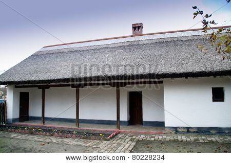 House Thatched Roof