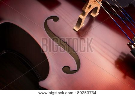 Cello, Close up