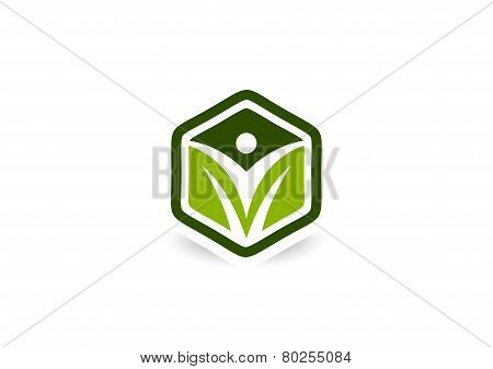 Healthy Body Cube logo
