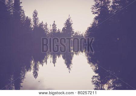 The Foggy Lake Scenery
