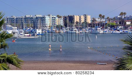Paddle Boarders At Marina Del Rey, Los Angeles, Usa.