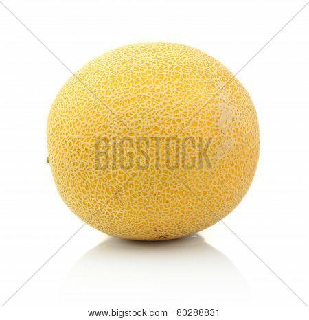 Melon Called Galia Isolated White In Studio