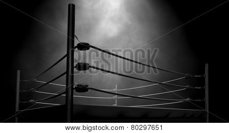 Classic Vintage Boxing Ring