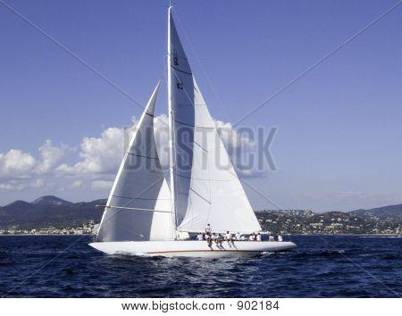 modern sailing yacht shamock v a 36 meter 1930 build j lass by camper & nicholsons poster