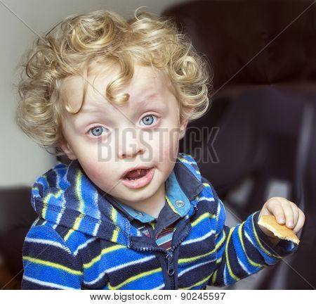 Little Curly Blonde Boy With A Biscuit