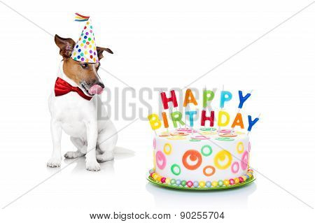 jack russell dog with licking tongue and hungry for a happy birthday cake with candels wearing red tie and party hat isolated on white background poster
