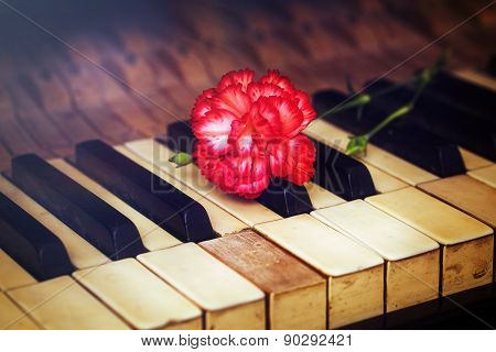 Old Vintage Gand Piano Keys With A Red Carnation Flower, Vintage Picture, Music Concept