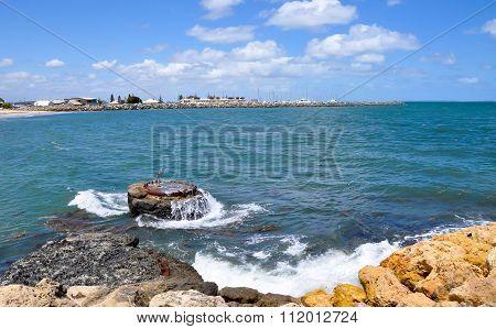 Marine Buoy at Bather's Beach: Fremantle, Western Australia
