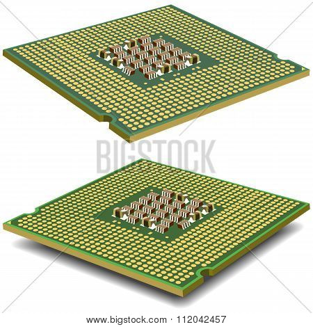 Computer processor microcircuit isolated on a white background. Vector illustration.