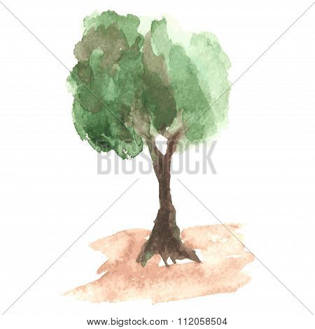 Airy watercolor tree with green foliage which flutters on a wind