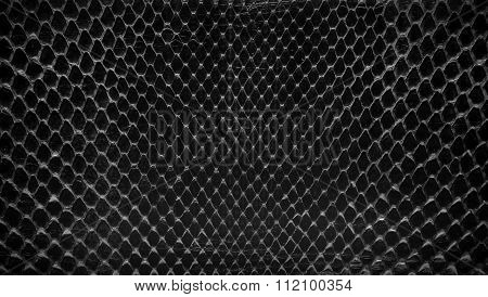 Black Snake Skin, Abstrat Leather Texture For Background.
