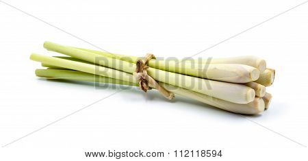 Lemongrass  On White Background.