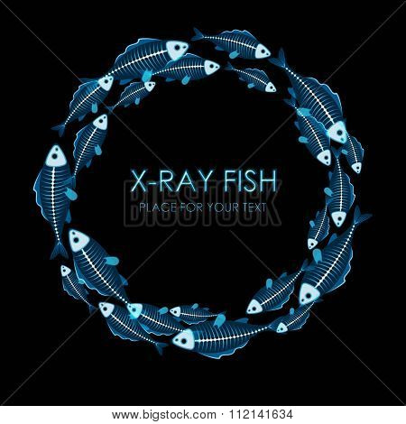 Circle of X-ray fish