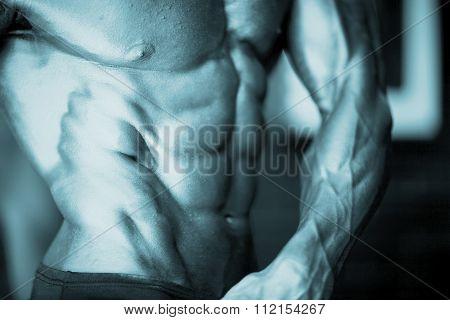 Male Bodybuilder Muscular Man