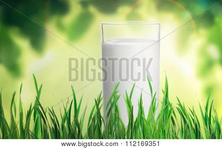 A Glass Of Milk In The Grass