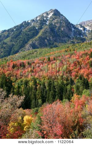 Fall Colors Abound At Sundance, Utah