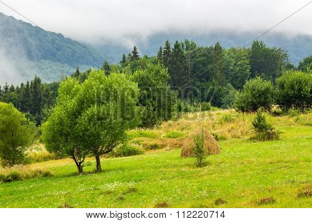 Haystack Near Trees On Hillside Meadow  In Mountains