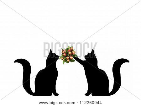 Cat Giving Flowers To Another Cat