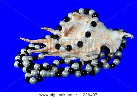 Seashell And Woman Beads From Pearls