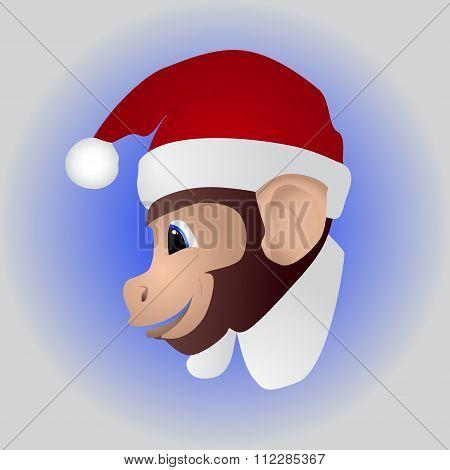 New year a cute monkey