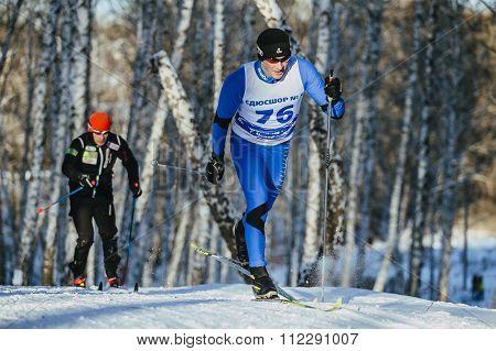 rivalry men skiers race classic style in a birch forest in winter