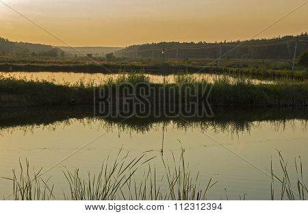 picturesque rice field with a red sunset in the fall