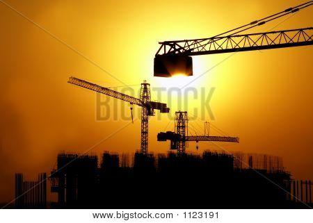 silhouette of cranes
