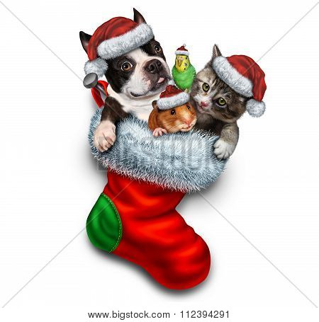 Pet Holiday Stocking