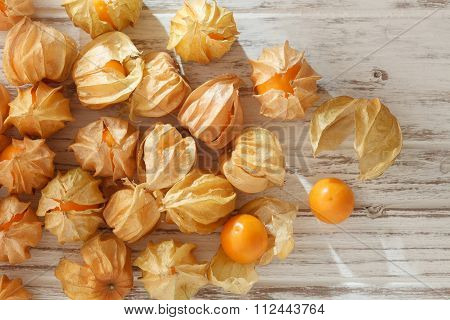 Cape Gooseberry Physalis Fruit Ground Cherry Organic Food Vegetabl