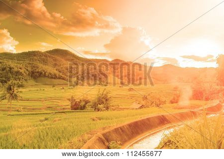 Agriculture Barley Farm And Cannel In Warm Tone