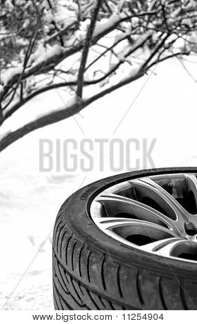 Winter Snow Tire
