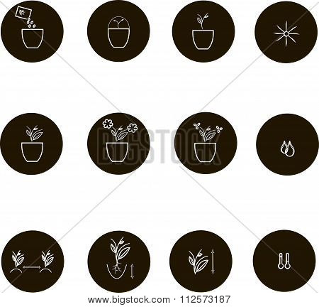 Icons of farming cultivation of seeds and plants. Thin white lines on a black background