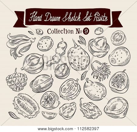Exotic fruits. Hand drawn sketch set vector illustration