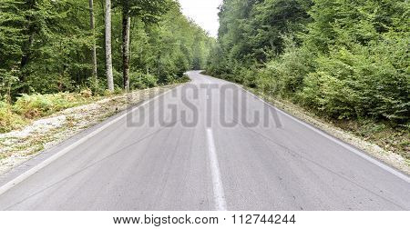 A Beautiful View Of The Road In The Countryside