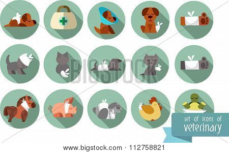 A set of flat icons pets of Veterinary with different animals. Flat illustration