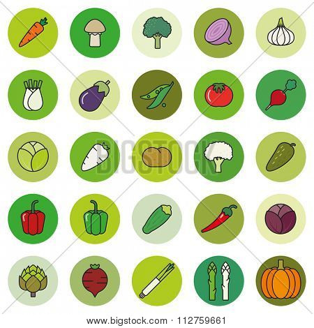 Vegetables Symbols Set. Collection of vegetables filled outline icons in green shaded circles