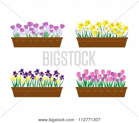 Spring flowers long vector photo free trial bigstock violet yellow irises purple white crocuses yellow white narcissus pink purple tulips collection of potted spring flowers mightylinksfo