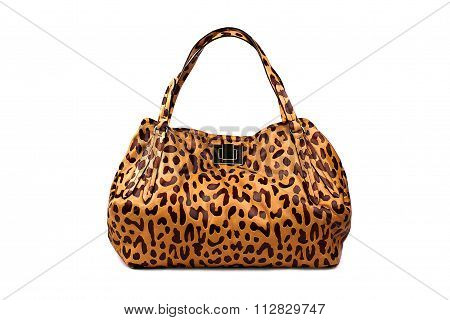 Brindle Female Bag