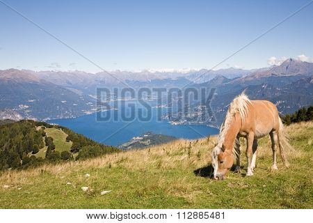 Como Lake Panorama, Italy
