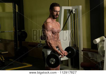 Muscular Man Doing Heavy Weight Exercise For Biceps With Barbell In Gym poster