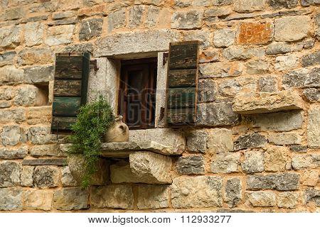 Open Window With Wooden Shutters