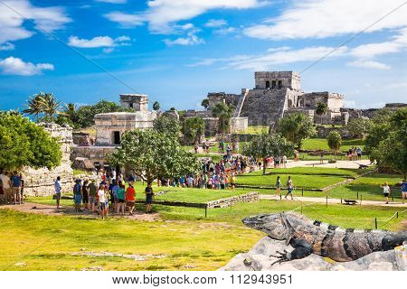 TULUM, MEXICO - NOVEMBRE 26. 2015:The crowd Iguanas watching the tourists who visit Tulim in Yucatan, Mexico on November 26, 2015. Over 1.2 million tourists visit the ruins every year.
