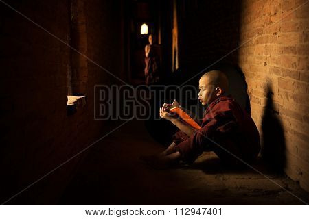 Young Buddhist novice monk reading book inside monastery, natural light shining thru.