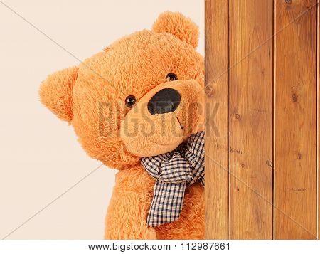 Fluffy Plush Teddy Bear