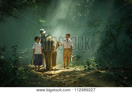 Elephant Took The Children To School At Elephant Village Thailand.