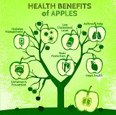 Graphic vector illustration of  beautiful hand drawn infographics with apples health benefits on a textured background in fresh and juicy style. Fresh fruits for healthy life. Handmade concept. poster
